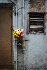 Bouquet (Gary Jones (HK)) Tags: door flowers window hongkong backalley urbandecay grunge alleyway bouquet grime grubby tinhau bunchofflowers 2013 nikond7000