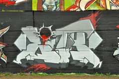 2013 05 19_0275a (Ravensview Images) Tags: graffiti lith techwall crazyapes