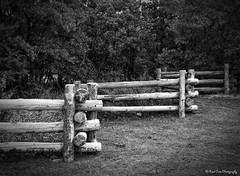 Log Fence_B_W (katsrcool (Kool Cats Photography)) Tags: wood oklahoma fence design logs structure arcadia canont3i