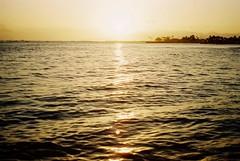 028 hawaii (cocorococoni) Tags: sea hawaii   newportra160