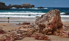 Rock & Bokeh (Melkeshna) Tags: espaa naturaleza beach nature rock stone landscape spain nikon europa europe bokeh asturias playa paisaje desenfoque llanes roca barro piedra d90 nikkor85mmf18d nikond90 dsc5020 nilleshna melkeshna