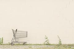 The Wall - 144/365 - 24 May 2013 (John Flinchbaugh) Tags: grass wall shopping 365 cart cinderblock