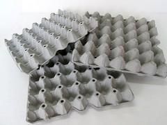 แผงไข่กระดาษ ถาดไข่กระดาษ pulp mold eggtray-7