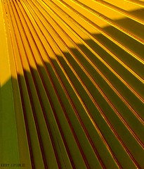 Golden Boards (Harry Lipson) Tags: light abstract geometric lines sunshine architecture golden pattern shapes architectural goldenrule sunandshade harrylipsoniii harrylipson harryshotscom harrylipson3 picmonkey:app=editor