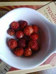 Today's crop (Ruth and Dave) Tags: red food fruit berries sweet harvest strawberries alpine crop homegrown