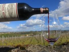 9667877731 af5f090a50 m 2013 Bordeaux Images Photographs Chateau Owners Wine Food Life