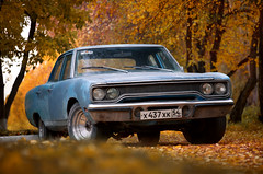 Ready for restore! (fireflite59) Tags: auto autumn leaves car russia muscle plymouth siberia american belvedere