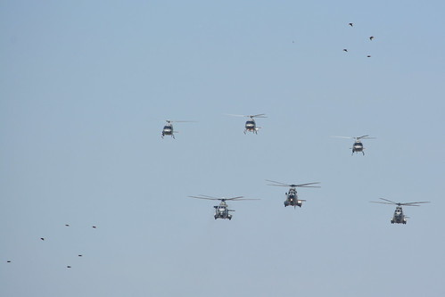 Birds vs Heli