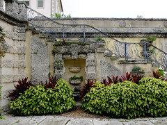 (Shane Henderson) Tags: trees plants green leaves gardens architecture stairs miami wroughtiron steps staircase worn weathered railing bushes distressed vizcaya coconutgrove