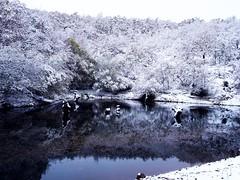 ESTADO MENTAL INVIERNO (Penhalvinho) Tags: winter snow cold roc nieve invierno frio marciano urano