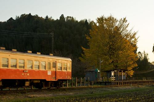 2009-11-21_DSC7257