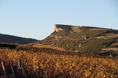 Roche de Vergisson (Chemose) Tags: autumn automne burgundy bourgogne vignoble vigne vinyard vergisson mâconnais