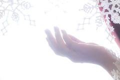331.365.2013 Let it go... (LiliCow) Tags: snowflake selfportrait frozen hand apieceofme