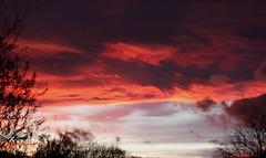 (laufar1) Tags: sky canon nightsky redskyatnight supershot 650d shepherddelight
