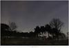 Het sterrenbeeld Auriga (5D317379) (nandOOnline) Tags: bomen nacht nederland natuur avond heide landschap strabrechtseheide ster sterren auriga mierlo voerman sterrenbeeld nbrabant pleiaden johanneshevelius zevengesternte wagenman firmamentumsobiescianumsiveuranographia