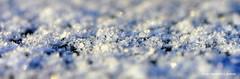 crispy cristals (janneman2007) Tags: schnee winter snow sneeuw canon350d kristallen the4elements ijskristal icecristal janneman2007