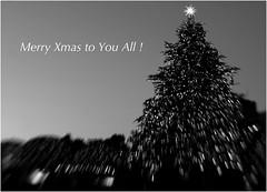 Merry Xmas to You All ! (Masahiko Kuroki (a.k.a miyabean)) Tags: xmas lensbaby optic fujixe1 composerprosweet35optic