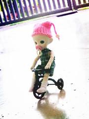 2014 ADAD 40/365 (Suemarie WP) Tags: boy baby home garden happy cycling tinies candy little handmade song plastic littlegirl brownie cutiepie blythe muffin abs abjd pacifier happymeal kewpie dragondance comparision momoko knitwear fairlyland aidoll parabox bjdbaby hujoobaby 11cmobitsu muffin11cm muffindoll paraboxmuffinhead