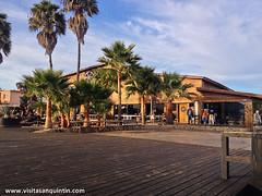 San Quintin Baja-134 (bajabrains) Tags: sunset cactus beach sports fauna volcano restaurant hotel san tour sierra pedro motor whales baja guide 1000 quintin martir {vision}:{street}=0793 {vision}:{sky}=0956 {vision}:{outdoor}=0975 {vision}:{sunset}=0511 {vision}:{mountain}=0578 {vision}:{clouds}=0874