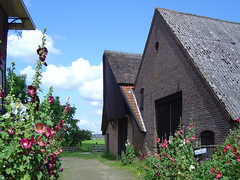 Bronkhorst (Dimormar!) Tags: 2004 vakantie achterhoek gelderland hengelo bronkhorst stokrozen landgoedtzelle