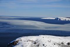 A Curve of New Ice (Insearchoflight) Tags: new sea sky snow ice beautiful newfoundland reflections labrador wayne curves stjohns norman signalhill capespear blueseas newice waynenorman