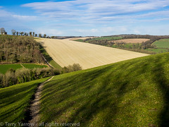 On Hod Hill (TDR Photographic) Tags: uk light england landscape track farm olympus dorset footpath possibles hillfort hodhill thedorsetrambler