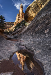 Canyon mirror (Bill Bowman (out of action)) Tags: canyonlandsnationalpark elephantcanyon needlesdistrict utah publiclandforpublicuse
