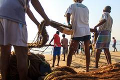 Fishing (Raja. S) Tags: india peoples marinabeach chennai rajasubramaniyanphotography rajasubramaniyan