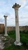 Salamis - basilica (8)