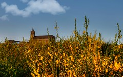 Eglise de Flawinne(Belgium) (YᗩSᗰIᘉᗴ HᗴᘉS +5 400 000 thx❀) Tags: church sky clouds yellow flower nature namur belgium belgique hensyasmine