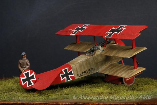 Fokker DR.I (22)