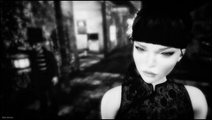 The Dwarf and the Chinese Girl (Akim Alonzo) Tags: secondlife dwarf chinese girl portrait chinatown