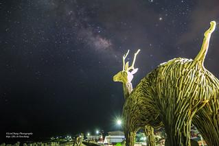 比西里岸的星空 Pisirian, Taitung, Taiwan _IMG_2299