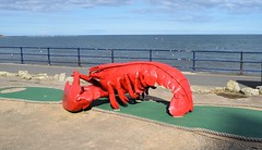 Yorkshire has the biggest lobster (Paul Thackray) Tags: yorkshire eastriding filey promenade seafront lobster crazygolf 2017