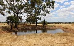 17 Pistol Range Road, Temora NSW