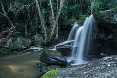 Middle Somersby Falls L (robertdownie) Tags: light rocks long waterfall falls cascade exposure australia flow moss rainforest sandstone tranquil curtain creek new south wales central coast gosford trickle trees water nsw somersby brisbane national park