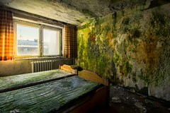 vegan suite (Captured Entropy) Tags: moss mold bed hotel decay abandoned lostplace urbex toxic