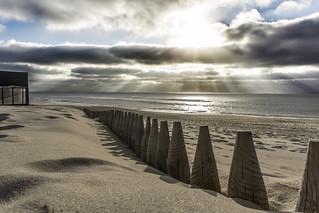 Sun Rays at the beach