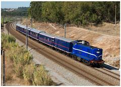 Virtudes 24-09-16 (P.Soares) Tags: 1400 azul comboio comboios cp comboioespecial presidencial train trains transportesxxi terminalintermodal linhadonorte lusocarris portugalferroviário