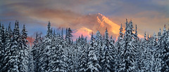 Mt. Hood (thecascadelodge) Tags: cascaderange mountains mthood northamerica oregon places seasons snow winter