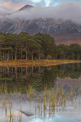 Coulin Reflections (Shuggie!!) Tags: clouds dawn forest grasses hdr highlands hills landscape lochcoulin morninglight mountains pine reflections scotland torridon trees westerross zenfolio karl williams karlwilliams