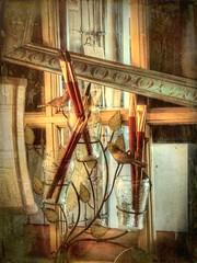 Lift a Brush (clarkcg photography) Tags: brush frame paint birds light glass window shade wire metal inspiremethursday