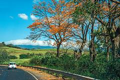 San Jose-Arenal Highway View (fotofrysk) Tags: road hills trees landscape view traffic trucks sanjosearenalhighway highway1 ruta1 centralamericatrip costa rica sigma1750mmf28exdcoxhsm nikond7100 201702069363
