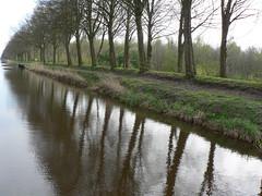everything concurs (achatphoenix) Tags: provinzgroningen nl bellingwolde houwingaham water eau wasser waterscape niederlande reiderland spring