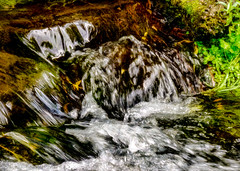 Cold Water (Steve Taylor (Photography)) Tags: art digital brown green white black water river stream newzealand nz southisland canterbury christchurch plant leaves blur waterfall