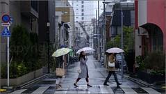 """The One in the Middle"" Asakusa, Tokyo, Japan (March 2017) (Kommie) Tags: asakusa tokyo japan girl lady woman japanese street candid photography rain umbrella fujifilm xpro2 fujinon 56mm f12 r"