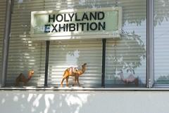 Holyland (ADMurr) Tags: la edendale holyland camel venetian blinds trees deadpan leica m240m0000576