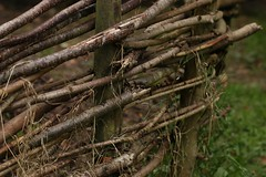 A fence (AngharadW) Tags: dof weeds bala angharadw grass branches wood fence hff