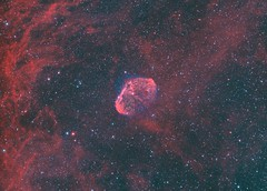 ngc6888 bicolour repro (__Aenima__) Tags: astronomy astrophotography astro autoguided astroimaging baader bi colour ccd cygnus deepskyobject dslr dso digital deepsky ed80 emission eq6 exposure equatorial filter finderguider finderscope frames fullmoon guided halpha ha hydrogen hii imaging image integration longexposure layered luminance long lrgb light moon mono monochrome mount nebula narrowband night neq6 nebulosity ngc6888 nature oiii oxygen phd2 photoshop processed pollution crescent crescentnebula qhy163 qhyccd qhy qhy163m refractor pixinsight photo space stars skywatcher sky stacking telescope tracking uk widefield zwo