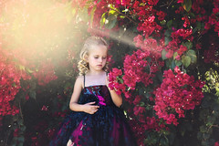 DSC_7647-1 (YoungForeverPhotography) Tags: model pink sun sunflare flare photography youngforeverphotography beautiful girl blonde love her loverher gorgeous bougainvillea flowers curls curlyhair hair eyes annatriant couture dress